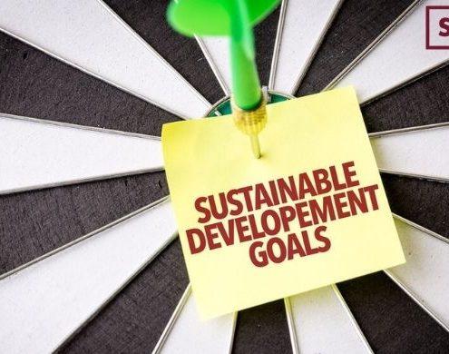 What Are UN SDG Goals