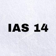 IAS 14 - Segment Reporting
